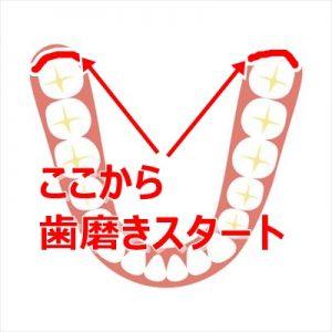 hamigaki_start